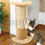 Že vaše kočka ještě nemá škrabadlo? Pořiďte jí ho a předejdete nepříjemným překvapením.