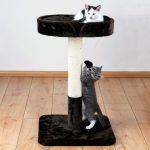 Škrabadlo pro kočky nesmí chybět žádnému chovateli koček