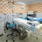 Spokojení mazlíčci nedají dopustit na veterinární kliniku Kleisslova Plzeň