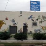 Veterinarian's Office Mural