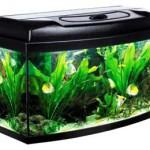 Potřeby pro akvaristiku – tipy a rady