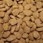Nejlevnější psí granule